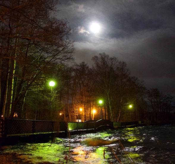 Täysikuu Espoon Haukilahden rannassa 25.12.2015. (Kuva Martti Ranin)