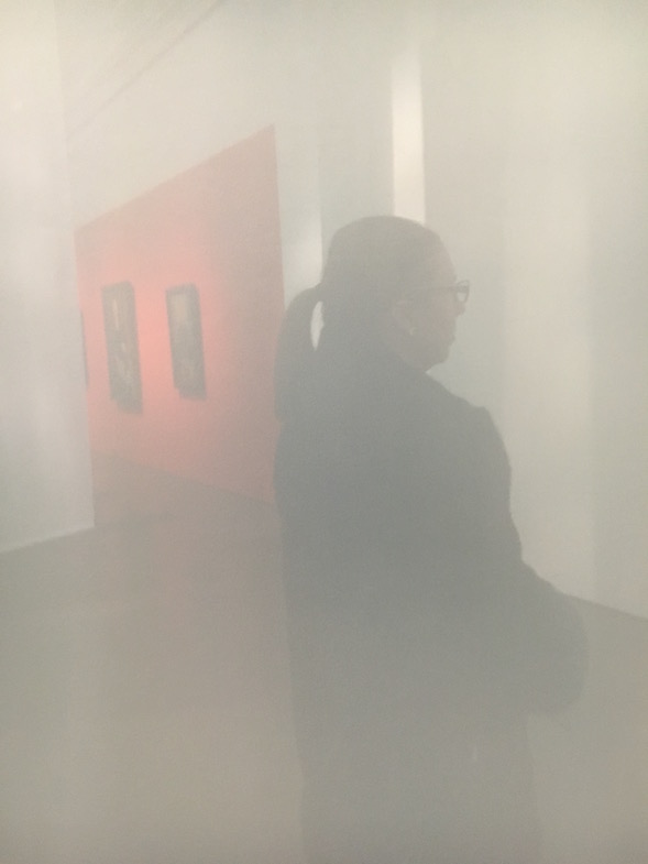 Tutustumassa Modiglianin näyttelyyn 7.1.2017.