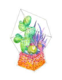 terrarium-3-print