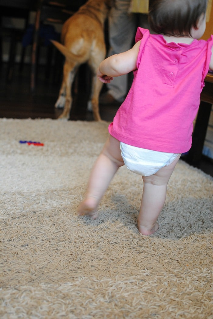 Safe for babies on the go! #HEBBabyDiapers AD