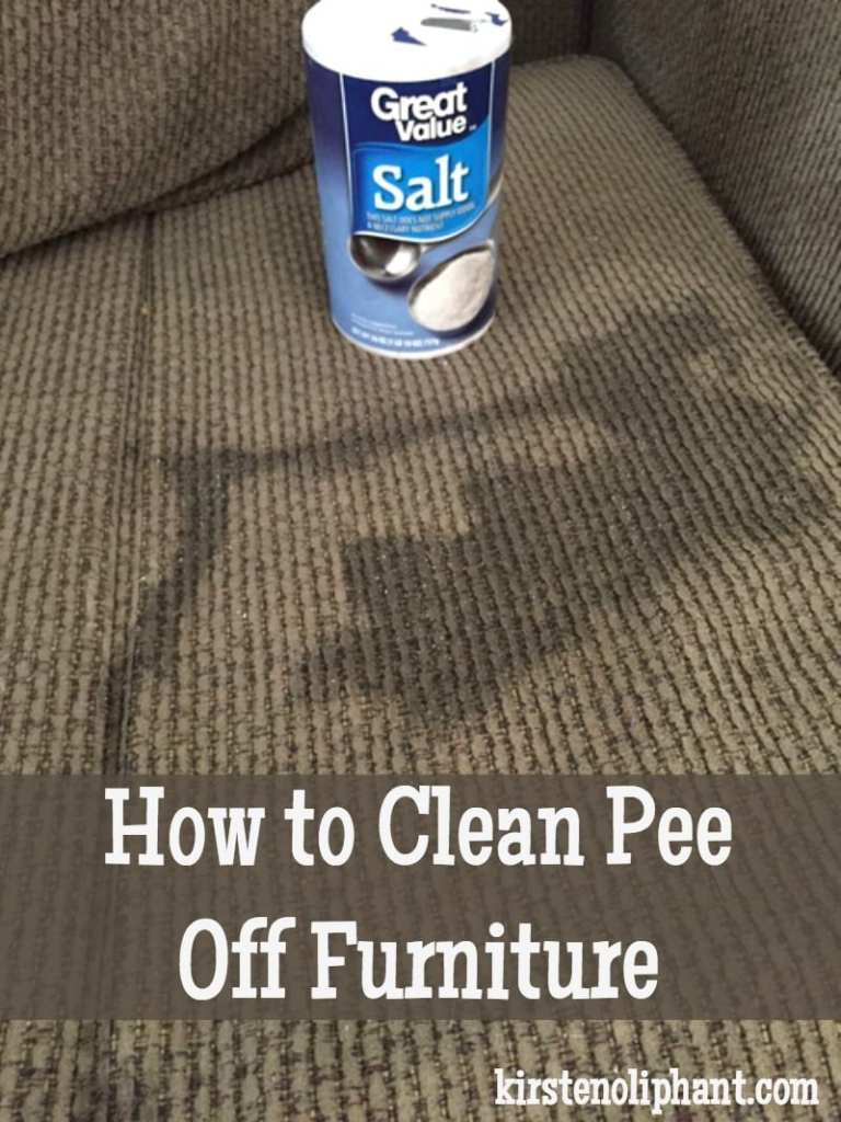 Learn how to clean pee off furniture or carpets with one surprising household ingredient!