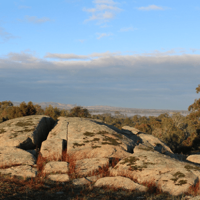 A picture of Ken the granite boulder on his hillside in Ravenswood, Victoria