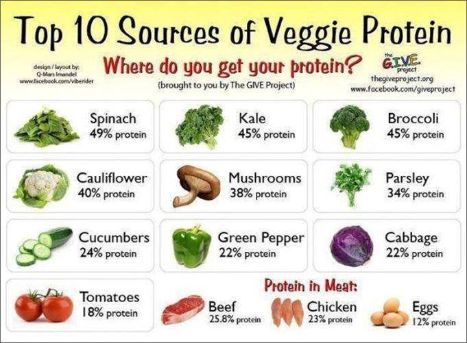 vegetabilske proteiner