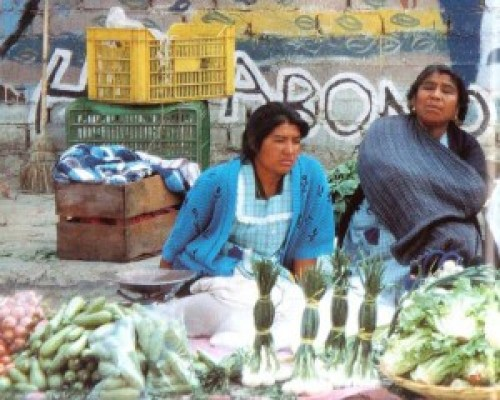 Mexiko kvinder.blog