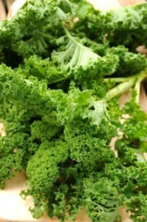 grønkålsblade