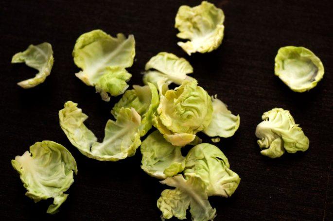 rosenkaalsblade-1