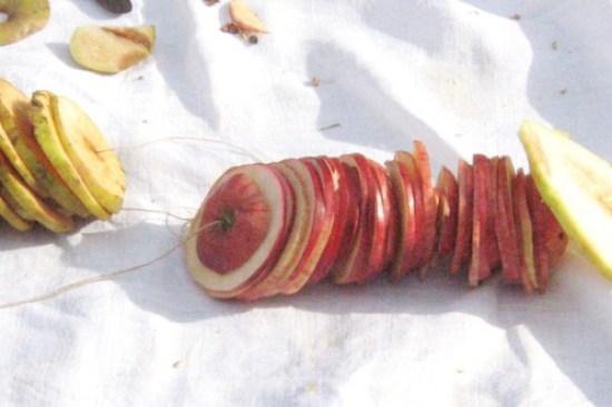 æbler.tørrede.frilandsm.