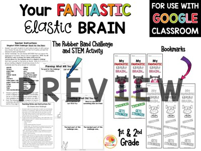 Your Fantastic Elastic Brain Activities for Lower Grades PREVIEW