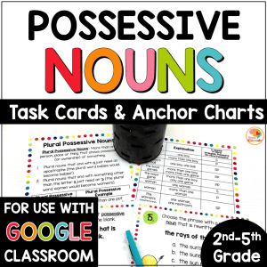 Possessive Nouns Task Cards and Anchor Charts Activities COVER