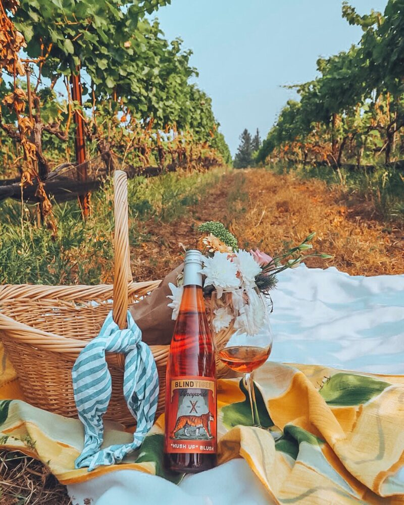 Looking for the most beautiful Instagrammable places in Kelowna? Check out this guide to find the best photography spots in Kelowna! Pictured here: Blind Tiger Vineyards