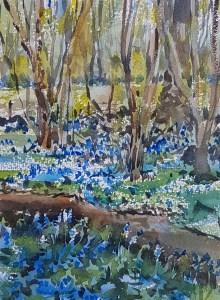 Kirstin White - Among the Bluebells