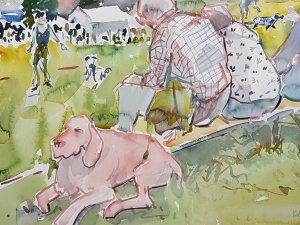 Kirstin White - Lana, GSP, rising above the Mullenscote Gun Dog Training demonstation!