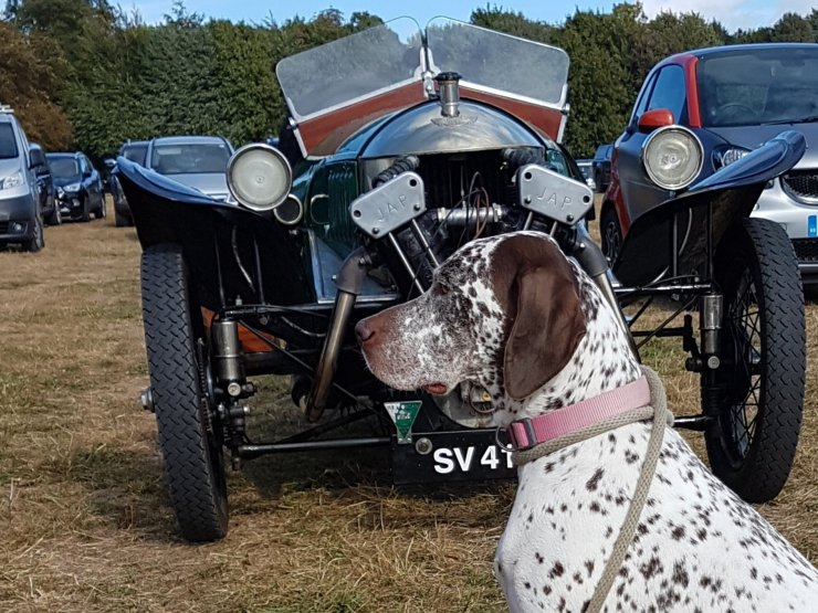 My dog, Aero, pictured with a lovely Morgan Aero at Hampshire Country Sports Day!