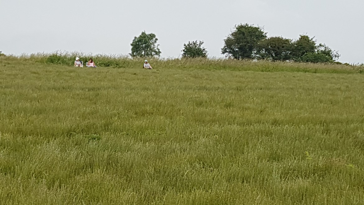 artists sketching in a meadow