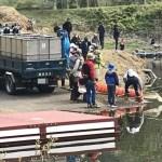 両毛漁業協同組合によるニジマス放流