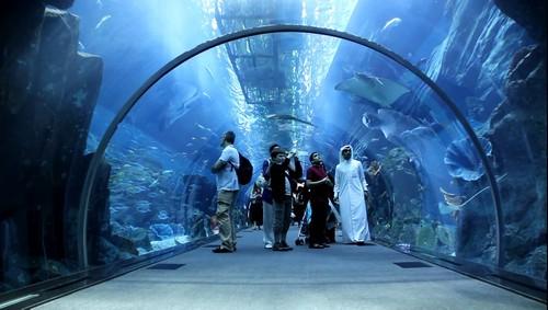 Aquarium di Dubai Mall