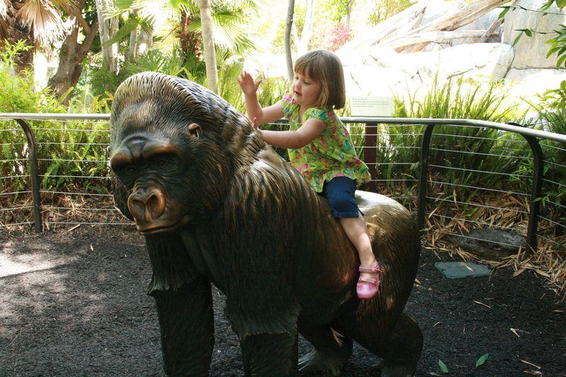 Zoo Hippo San Francisco