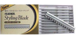 Box of 10 Replacement Feather Blades