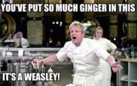 gordon-ramsay-insults-so-raw-theyll-give-you-salmonella-40-photos-12