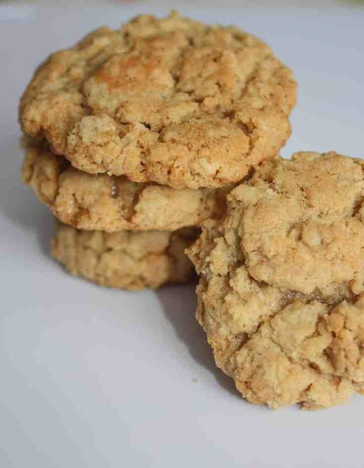 Oatmeal cookies like Grandma used to make. These gluten free cookies use old fashioned oats and a hint of cinnamon to create a chewy, flavourful snack.