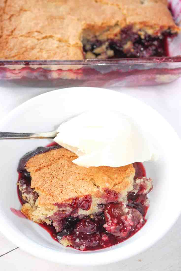 Jumbleberry Pudding is a delicious blend of seasonal fruits crowned with a cake like topping.  This gluten free pudding cake uses frozen berries and can be a fruity finish to a meal any time of the year.