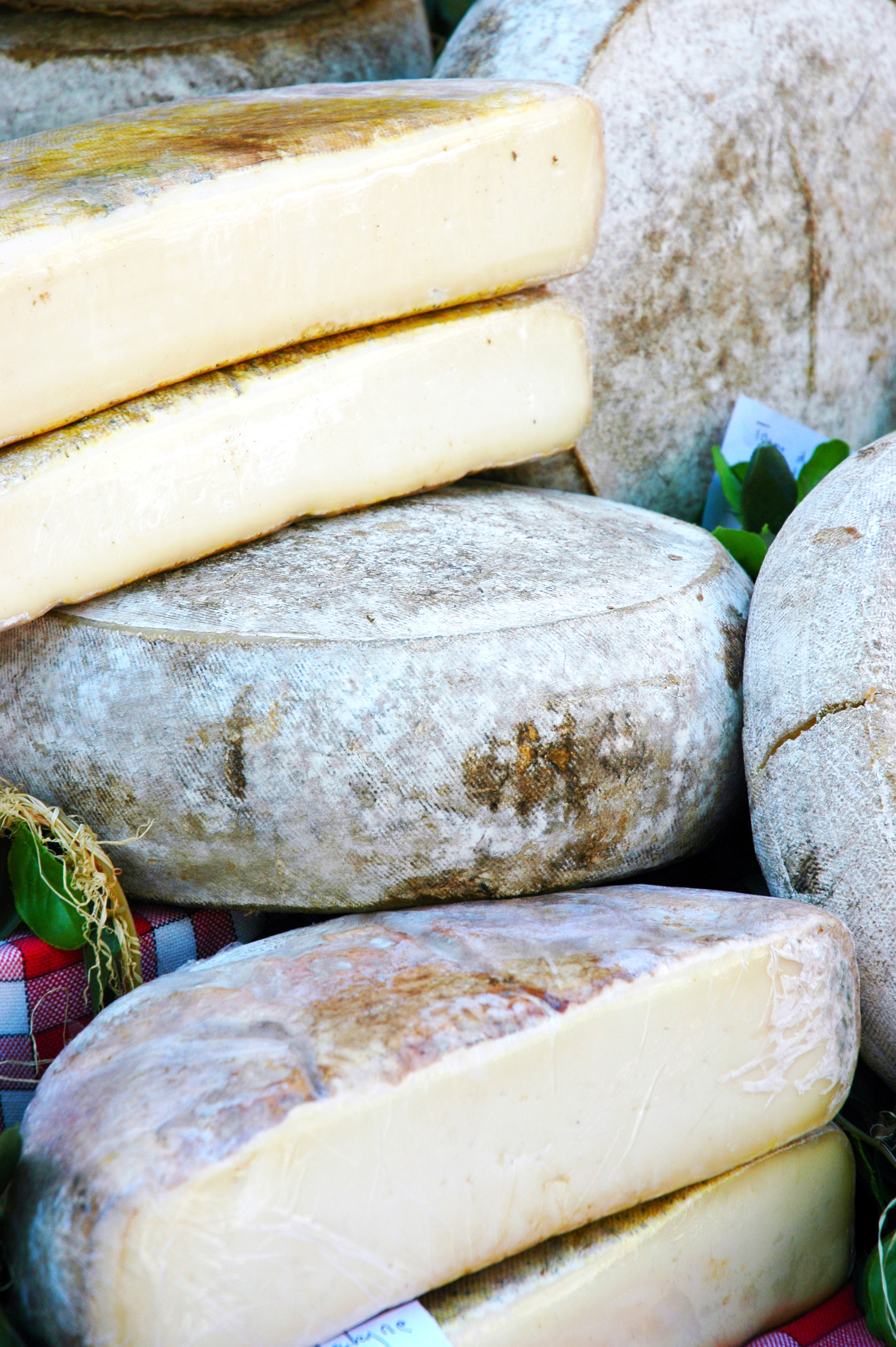 market-day-fromage