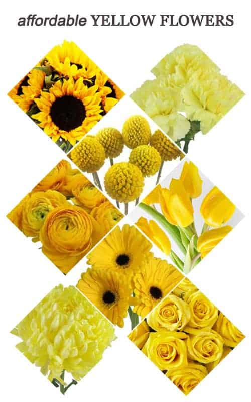 Affordable Yellow Flowers for Your Wedding