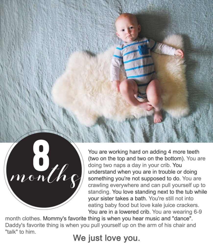 Finnegan's First Year Photo Project : Eight Months