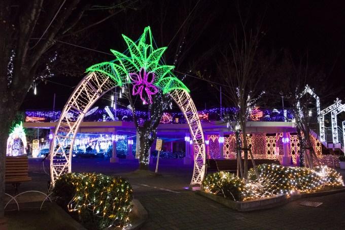 「神戸市立須磨海浜水族園「クリスマスナイトアクアリウム」」の画像検索結果
