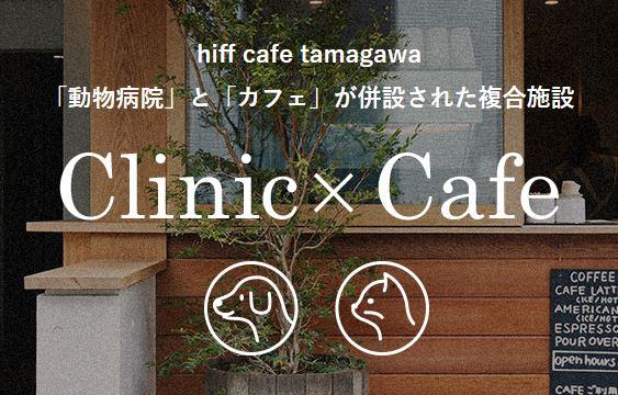 hiff-cafe