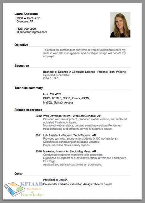 sample cv for it jobs