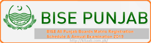 Punjab Matric 10th Class Result 2019 Announced For All Boards
