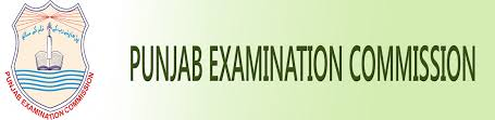 PEC All Board 8th Class Date Sheet 2017 Punjab Examination Commission Announced