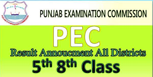 PEC Punjab 5th Class Result 2020 All Districts Enter Your Roll Number or Name