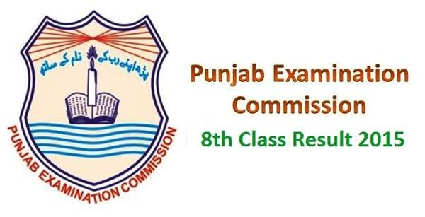 Punjab PEC 8th Class Model Papers Download Sample Papers Preview Online Grade 8th Syllabus Past Papers