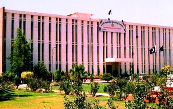 Sindh Agriculture University Tandojam Engineering Admission Session 2019 in Electrical Mechanical Civil BSCS Eligibility Criteria Dates