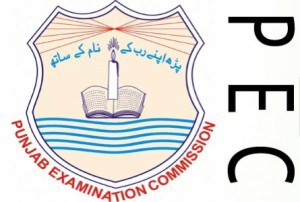 PEC Bahawalpur Board 5th Class Result 2020 Bahawalnagar Rahim Yar Khan Enter Your Roll Number Name