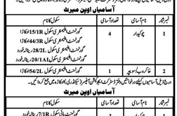 Education Department Okara Jobs 2021 Application Form Eligibility Criteria Dates and Schedule