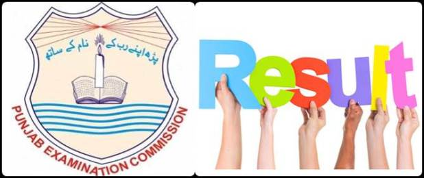 Enter Roll Number and Get 8th Class Result 2019 of PEC