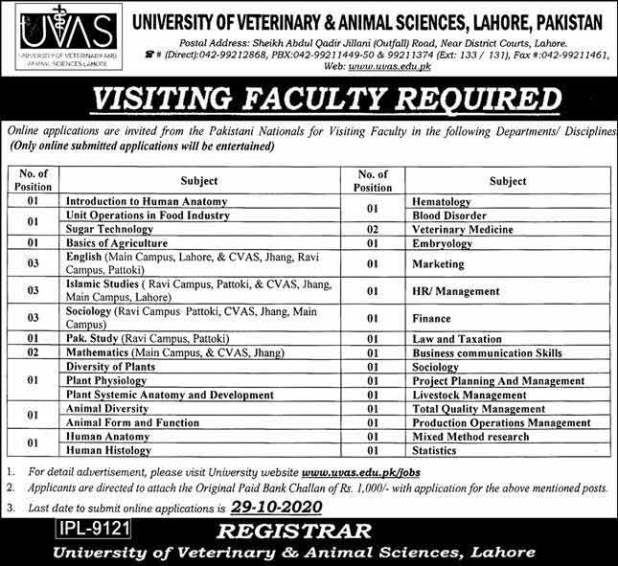 University Of Veterinary And Animal Sciences UVAS Lahore Jobs 2020