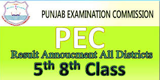 PEC 8th Class Top Position 2019 with Name Marks and 8th Result 2019