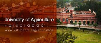 University of Agriculture Faisalabad UAF Entry Test 2020 Dates Venue Sample Paper