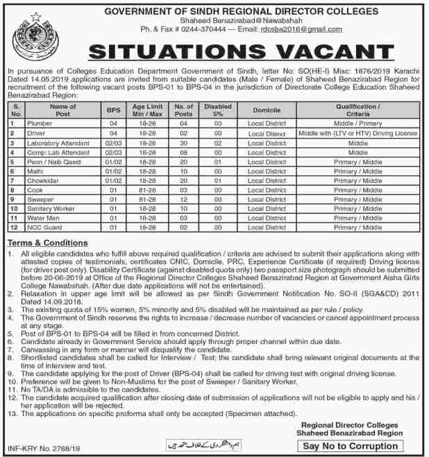 Govt Of Sindh Regional Director Colleges Jobs 2019 OTS Test Apply Online Schedule and Dates