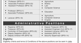 Mir Chakar Khan Rind University of Technology Jobs 2021 Application Form Eligibility Criteria