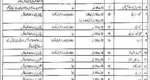 Pakistan Bait ul Mal Jobs 2021 Application Form Eligibility Criteria Last Date