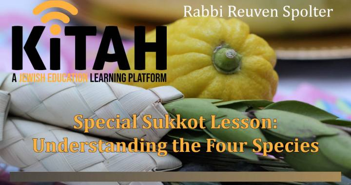Special Sukkot Lesson Graphic