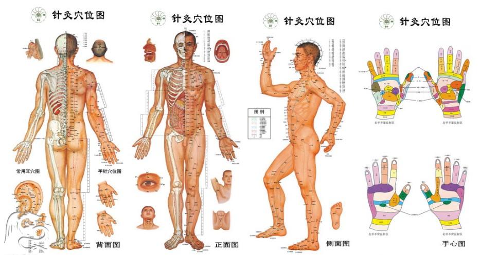 Image result for akupunktura