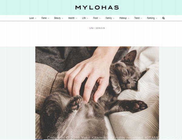 mylohas_世界から猫が消えたなら