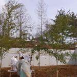 「森の見える家」地鎮祭