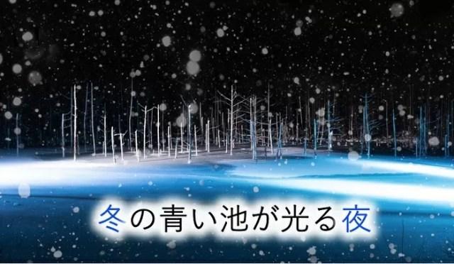 冬の青い池ライトアップ